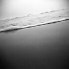 waves through a holga by sara montour