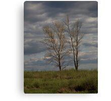 Prairie Hills Canvas Print