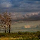 Rolling Clouds by Gretchen  Mueller Steele