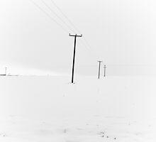 Whiteout by Jonathon Wilson