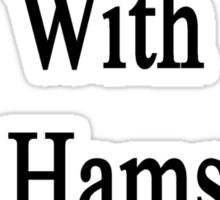 Don't Mess With My Hamsters Or Else  Sticker