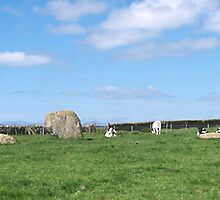 Long Meg and Her Daughters by WatscapePhoto