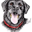 Black Labrador retriever by leoparddesigns