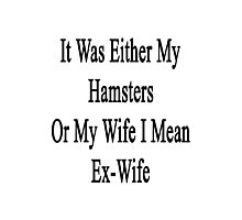It Was Either My Hamsters Or My Wife I Mean Ex-Wife  Photographic Print
