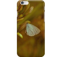 Vintage Style Butterfly iPhone Case/Skin