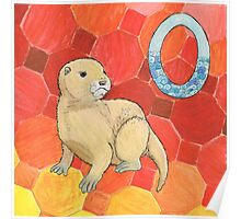 O is for Otter Poster