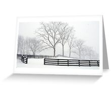QUIET TUESDAY  Greeting Card