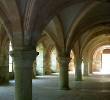 Vaulting at Fontenay by MeredithS