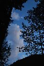 Blue Sky Evening by Tori Snow