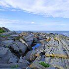 Maine Coast by Dionne A. Ward