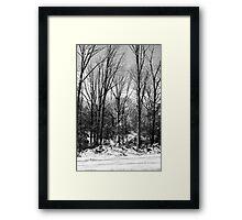 SC Snow Framed Print