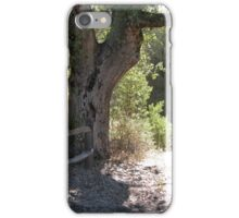 Path to Green Valley iPhone Case/Skin
