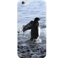 Adelie Penguins Antarctica 2 iPhone Case/Skin