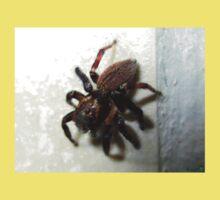Arachnid Baby Tee