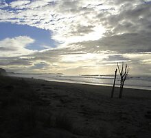 Matata Beach by Whole Shot  Photography