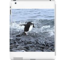 Adelie Penguins Antarctica 2C iPad Case/Skin