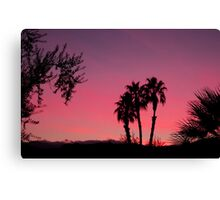 Vivid Desert Sunset Canvas Print
