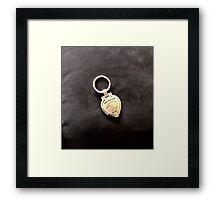 Kiwi Keyring Framed Print