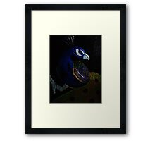The Varnish Prince (or Peacock) Framed Print