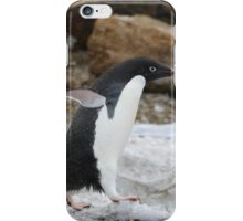 Adelie Penguin in Brown Bluff, Antarctica 6 iPhone Case/Skin