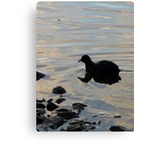 Floaty Bird Canvas Print