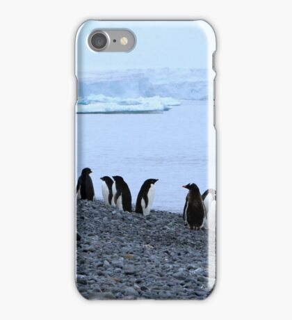 Adelie Penguins Antarctica 7 iPhone Case/Skin