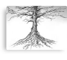 Tree sketch Canvas Print