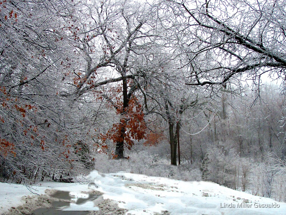 A Snow Scene by Linda Miller Gesualdo