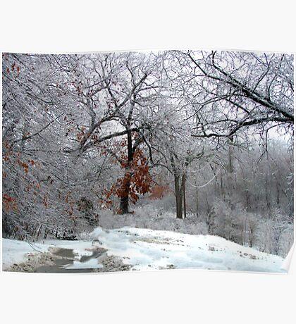A Snow Scene Poster