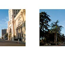 6th Street + Park View Street, Macarthur Park, Los Angeles, California, USA...narrowed. by David Yoon