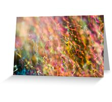 Iridescent Colours of Soap Film Greeting Card