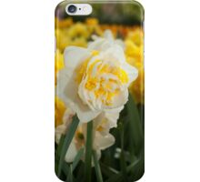 """Double Narcissus """"Lingerie"""" iPhone Case/Skin"""