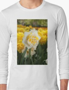 """Double Narcissus """"Lingerie"""" Long Sleeve T-Shirt"""