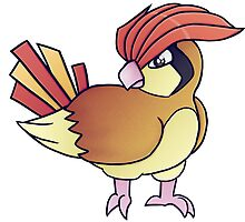 #017. Pidgeotto by bonejangless