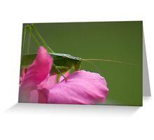 """Green Brush Grasshopper"" Greeting Card"