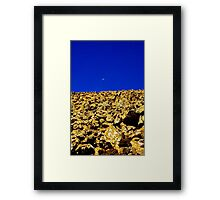 Crossover - Hartz mountains Framed Print