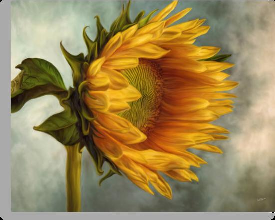 Sunflower  by AnaCBStudio