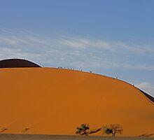 Dune 45 by mamba