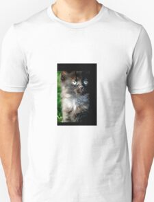 Bright Eyes the Kitten / Cat Unisex T-Shirt