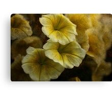 Melody in Yellow Textured Canvas Print