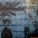 Wall Shadows by mrfriendly