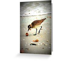 Seaside dinner Greeting Card