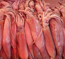 Live Freshly Caught Squid at Maltese Fish Market by HotHibiscus