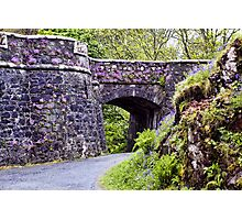 Dunvegan Castle Wall Photographic Print