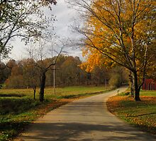 Kentucky Back Road in Fall by Virginia Shutters