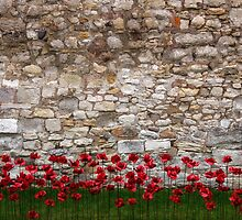 Tower walls by Greg McMahon