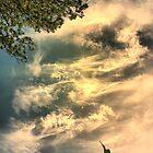Cloud Fire by kenspics