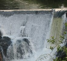 Waterfall at Pi'ihonua - above Hilo by ronholiday