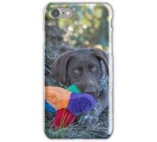 My Puppy Toys... iPhone Case/Skin
