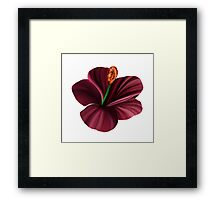 Best Fantasy Flower Framed Print